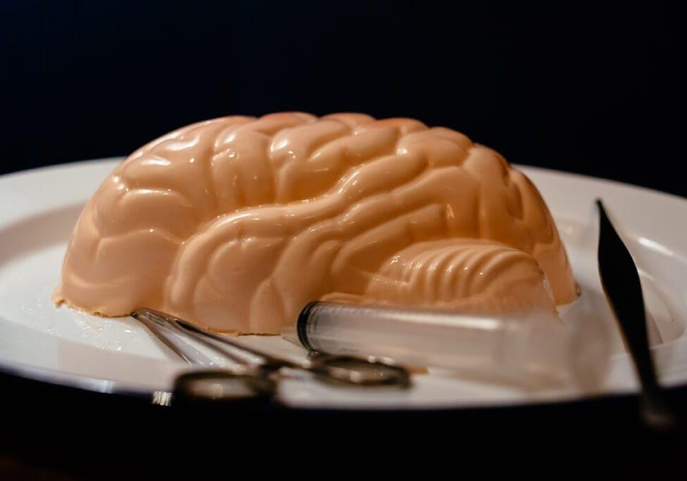 Guerilla Science Jelly Brains. 19.9.19 ©Richard Eaton 07778 395888
